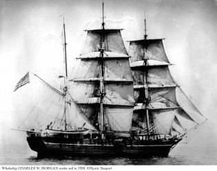 Whaleship Charles W. Morgan under sail in 1920.
